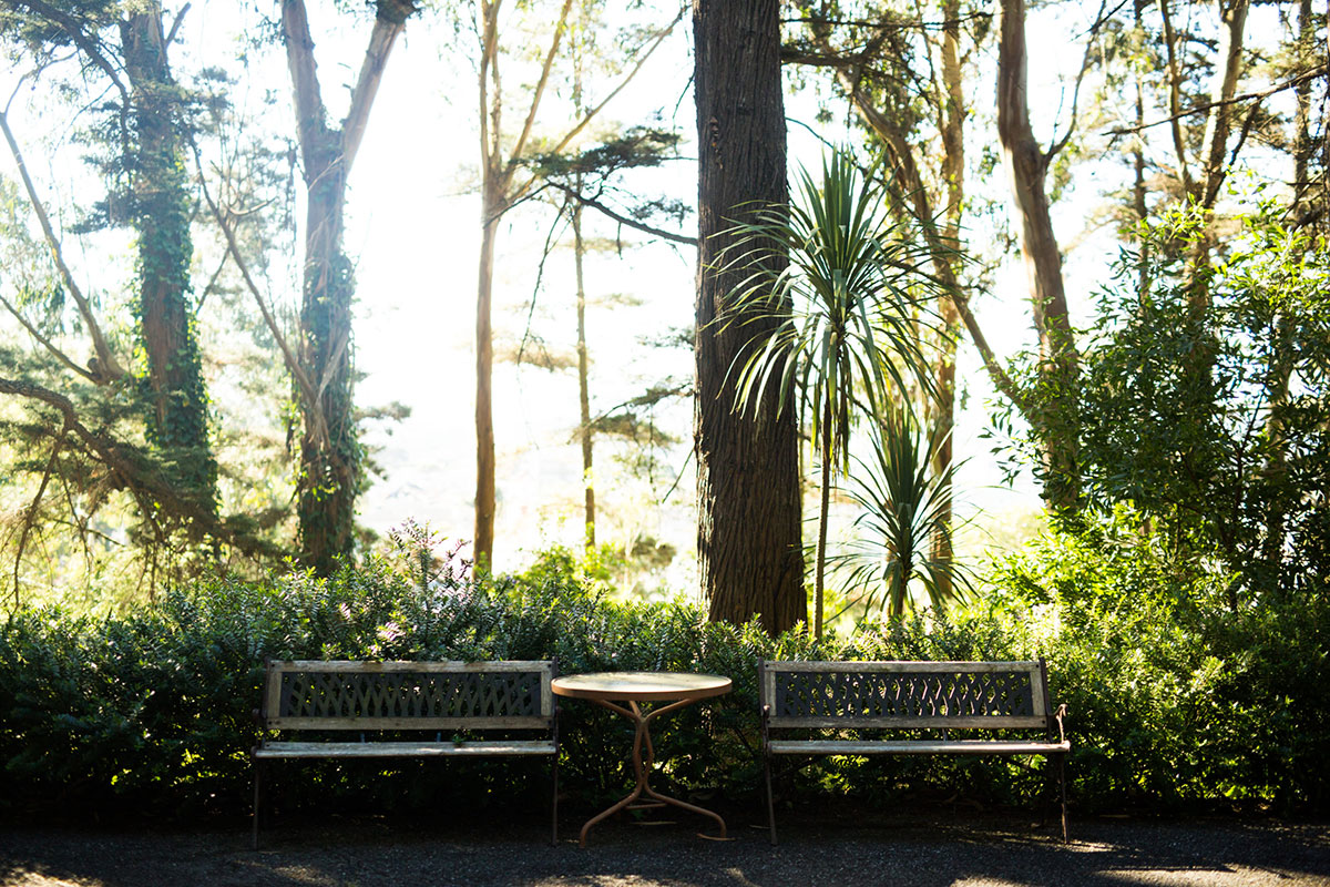 Arden Wood benches